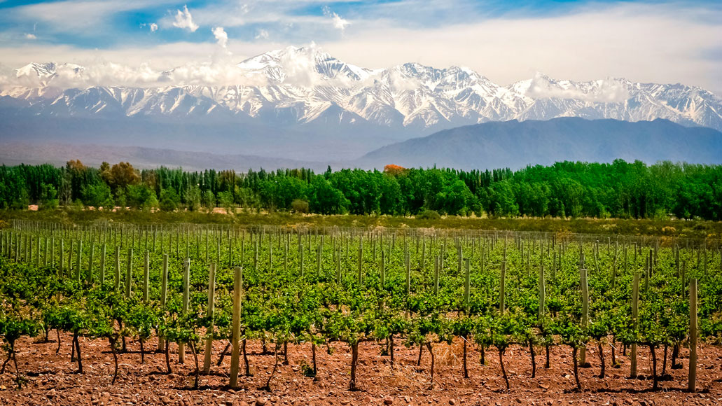 Tour in Mendoza - ATN Travel Services
