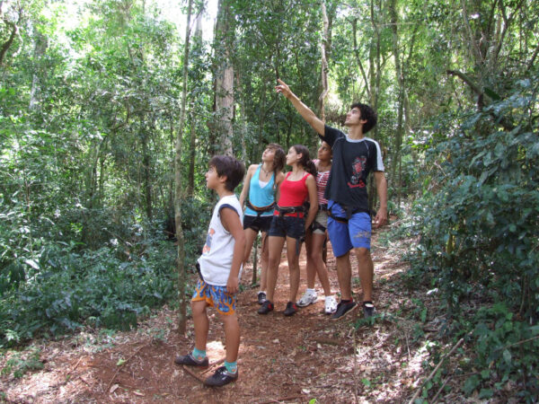 Día a Día DÍA 1 - en Iguazú El tour comienza saliendo desde el aeropuerto de Buenos Aires. Una vez que arribe a Puerto Iguazú un guía turístico de ATN Travel Services lo estará esperando con un cartel con su nombre para llevarlo a su hotel. Cerca de las 2 de la tarde nuestro guía lo pasará a buscar para tomar el tour «Iguazú Forest». Este es un tour de medio día de duración e incluye actividades tales como Trekking, Wet Rappelling, escaladas, etc. Cada una de estas actividades está orientada al turismo aventura y turismo ecológico para personas de todas las edades, una experiencia única y muy divertida en plena selva misionera. DÍA 2 - en Iguazú Después del desayuno, lo pasaremos a buscar para tomar el tour de día entero a las cataratas del Iguazú del lado argentino. Será guiado por pasarelas dentro del Parque Nacional de las Cataratas del Iguazú para tener una vista increíble de más de 200 saltos de agua, visitando el sendero verde, los circuitos inferior y superior y la garganta del diablo con el tren ecológico. Por la tarde podrá optar por realizar la gran aventura, un tour opcional dentro del Parque Nacional Iguazú, consiste en una navegación a través de las cataratas. A las 5 pm regreso a su hotel en Puerto Iguazú. DÍA 3 - en Iguazú Desayuno y transfer al aeropuerto. Regreso a Buenos Aires y fin de nuestro tour Las Cataratas del Iguazú 3 días 2 noches.